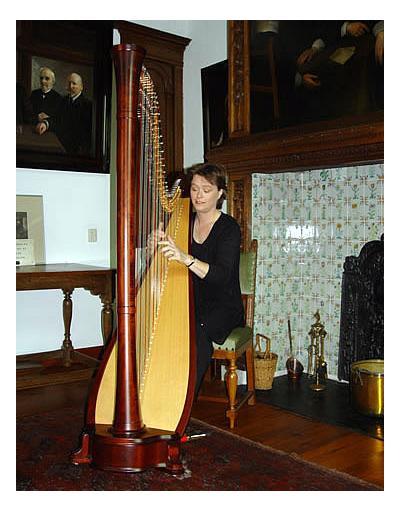 Harpiste voor bruiloften etc.